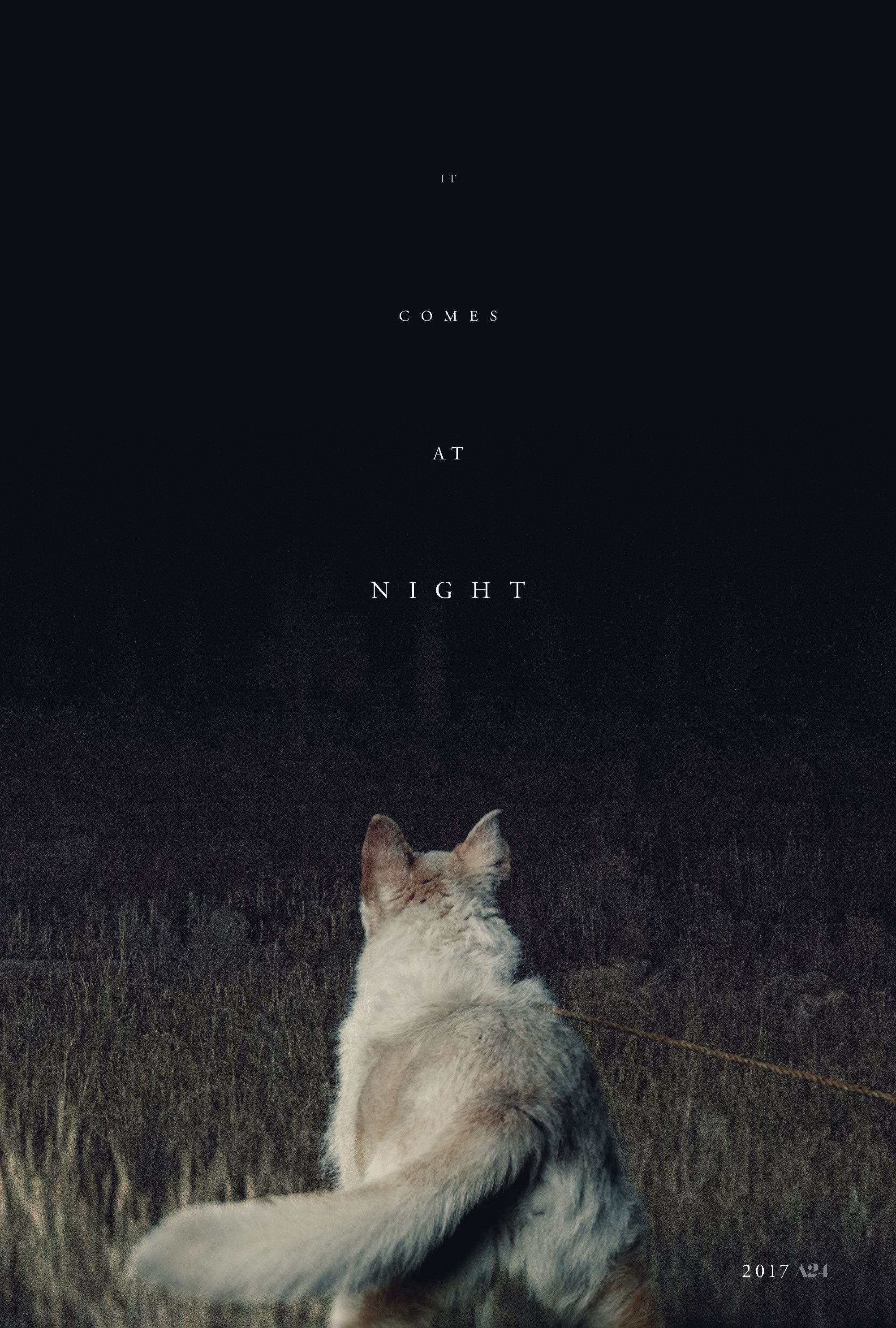 It Comes At Night   A24