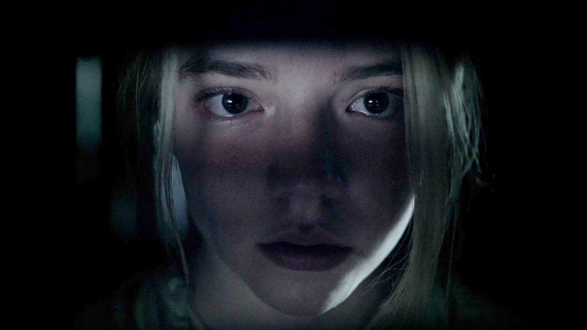 Peek A Boo Trailer