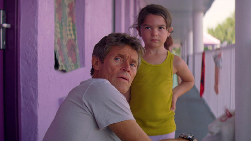 Florida Project Thumbnail 16 9